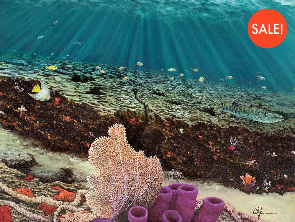 reef-sale