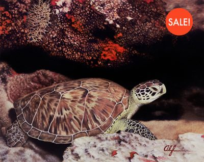 greenTurtle-sale